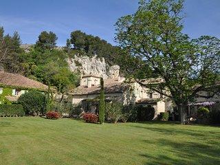 Charming villa - Moulin de la Roque - Noves