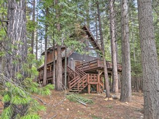 NEW! 2BR+Loft Camp Connell Cabin w/Trail Access!