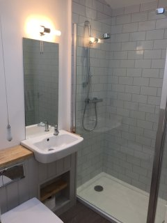 Downstairs accessible shower room