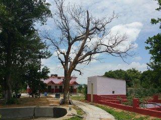 Patnam Farm Resort