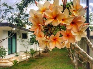 Moderno apartamento en Puerto Morelos cerca de la playa y rodeado de vegetación
