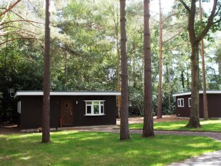 BEAUTIFUL WOODLAND SET THREE BEDROOM TIMBER CABIN WITH LAKE VIEWS