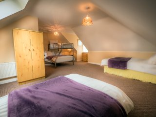 Grangeclare Paddocks B&B - Family Room Ensuite with Shower