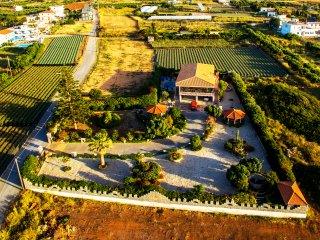 Luxury Villa Antikleia, Anissaras