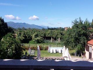 Mas des Albères - Piscine - Plages à 2km - 8 chambres + dortoir (36 pers max)