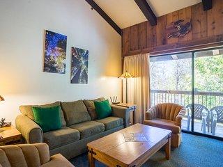 Living area sleeps 2 on the queen size sofa sleeper.