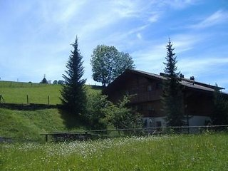 2 bedroom Apartment in Zweisimmen, Bernese Oberland, Switzerland : ref 2297001