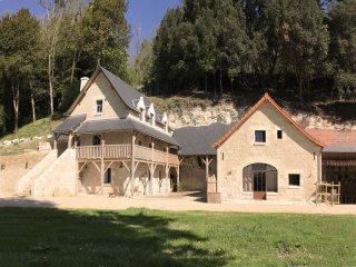 Le Relais du chateau de Sonnay : 3 Gites 4* pour 12 personnes, a 7 km de Chinon