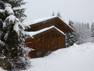 Chalet Renaissance - 3 Large Bedrooms, Very Spacious, Bus Stop and Piste close