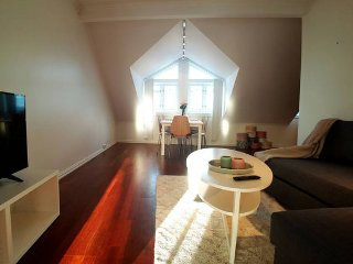 Fantastic apt in Tromso Centre