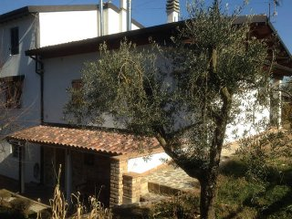 Torgiano - Assisi, 'Radici House' Appartamento - Villa