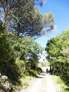 Promenade sur le Domaine