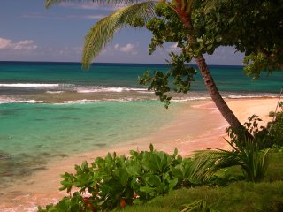 Hau Tree Beach House, North Shore, Haleiwa, Waimea.  Oahu , Hawaii