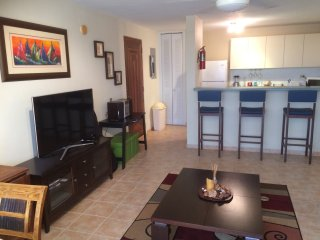 Paraiso Taino 2 bedroom, fully air conditioned, free WiFi and laundry, screens