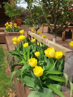 Spring, Summer, Winter or Autumn - a stunning place to be in any season