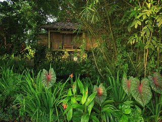 JOGLO GUMUK / Historical Wooden House / rice field view, Yoga, private kitchen