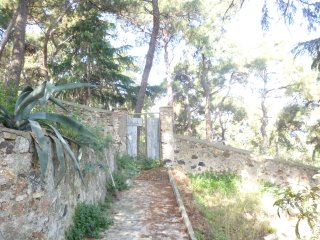 A house in  600 m2 garden near forest with sea view