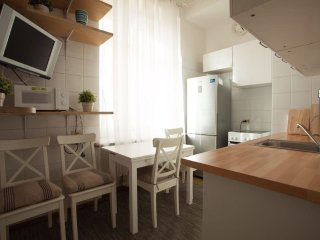 Central Moscow cozy apartments