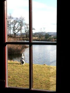 View from the front door.