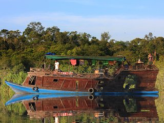 Borneo Alase Orangutan Kelotok Tour - Unique Local House Boat (non room & AC)