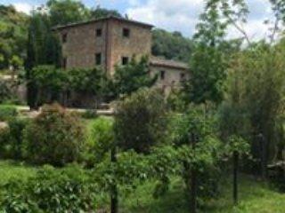 Molino di amarrante, vacation rental in Montaione