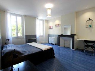 Spacieuse chambre en centre ville d'Albi