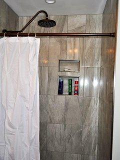 Master Bathroom Shower