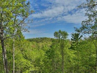 Beautiful Mountain View from Cabin