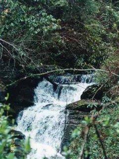 Waterfall Near Cabin