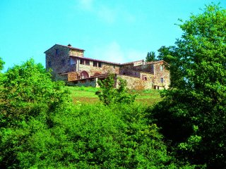 Farmhouse Rental in Tuscany, Castellina in Chianti (Chianti Area) - Villa