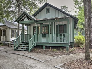 'April Showers' 1BR Steinhatchee Cottage!