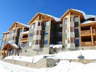 Grizzly Lodge: Premier  2 bedroom/2 bath condo, Private Hot Tub,BBQ on Deck, Big White