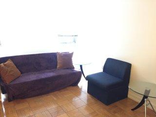Sunny spacious alcove studio apartment steps to central park