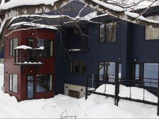 Shinsetsu Apartments - 2 Bedrooms 2 Bathrooms