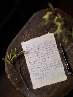Love letter - from our favourite people in the world, our guests.