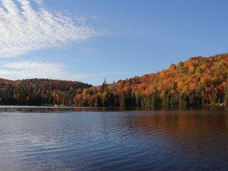 Chalet en bois rond avec accès au Lac Long (LE LOG HOME), Saint-Adolphe-d'Howard