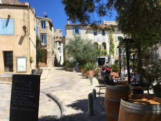 No1 La Place, Bages - lagoon & sea views in village between Narbonne & Collioure