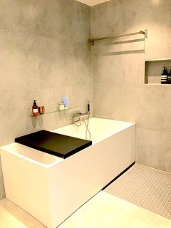 Large bathtub and separate shower