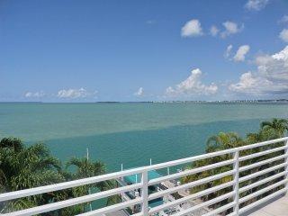Open Ocean View