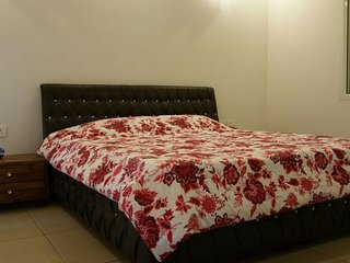 Rosedale Cottage- 3BHK Ultra Luxury Cottage at Chail near Shimla, Himachal