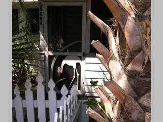 Flamingo House: 1BR Elderly-Friendly Steps From Beach, Anna Maria