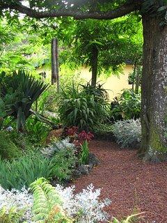 Path through garden to cottage #6