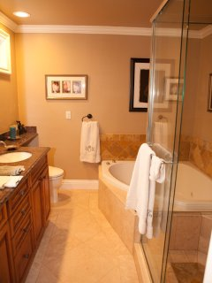 Master bath Waterfall Jucuzzi Tub and huge dual showerhead shower