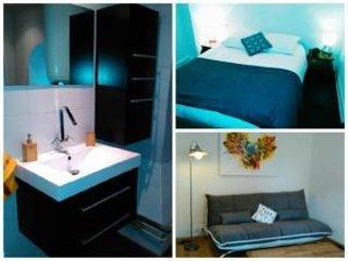 Appartement 45 M carré  Turenne Petite venise Colmar Hyper centre