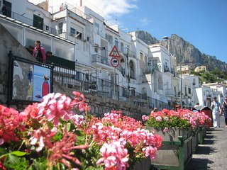 Casa Dora - Typical capri house