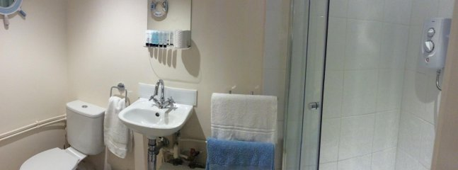 Ensuite Bathroom With Electric Shower