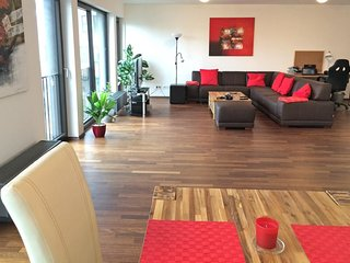 2-Bedroom Furnished Penthouse Stuttgart City, Stoccarda