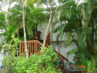 Treetops, quaint guest cottage on the Imperial River, quiet,wildlife,kayaks