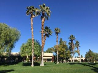 Quiet Desert Princess Golf Resort Paradise