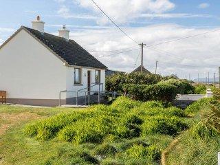 Valentia Island, County Kerry - 16103